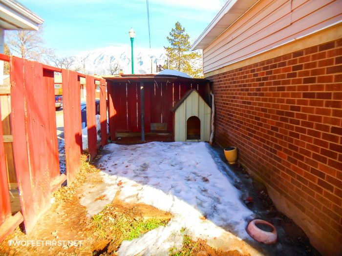 old dog house before makeover of backyard