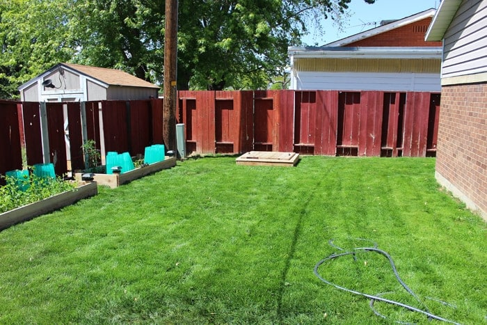 Backyard Spring 2014