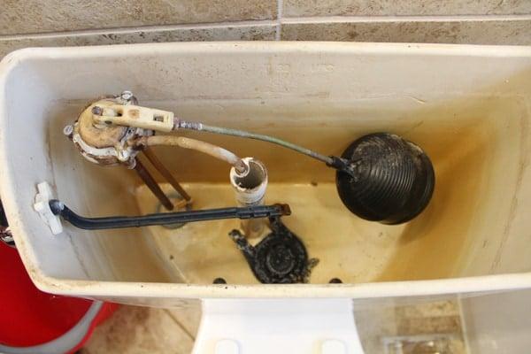 Drain toilet water