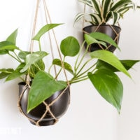 DIY hanging planter from a metal bowl