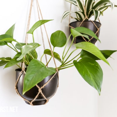 hanging planter from 3m command hooks