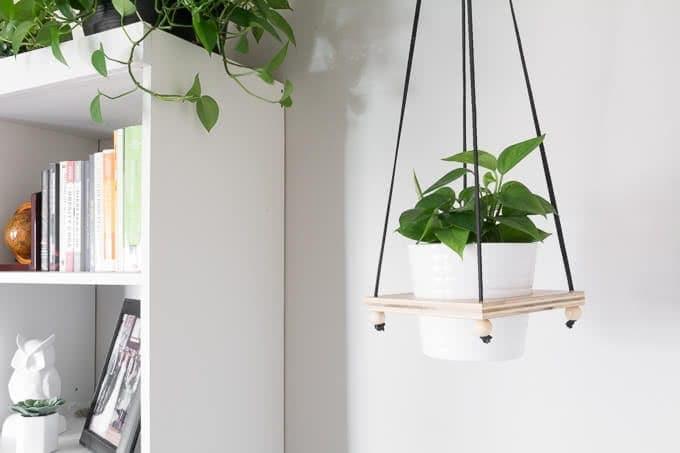 DIY Hanging Plant Holder: Make a Wooden Hanging Plant Pot Holder