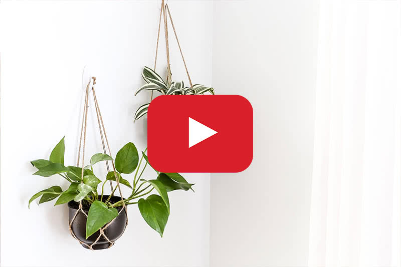image that links to youtube video on hanging planter in metal bowl