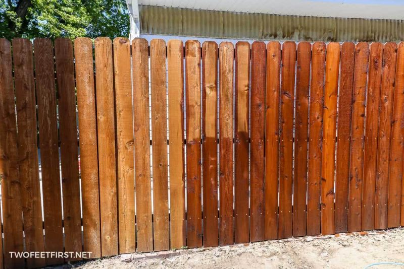 the process of staining a fence with a roller