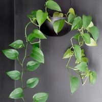 Upcycled Thrift Store Bowl Hanging Planter // DIY Hanging Planter