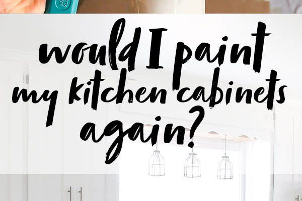 would I paint kitchen cabinets again