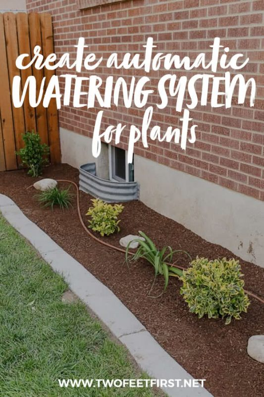 create automatic watering system for plants