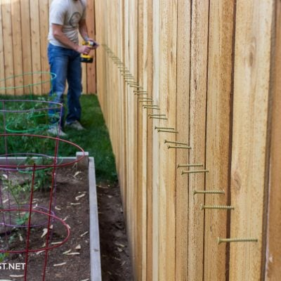 screwing cedar pickets into place